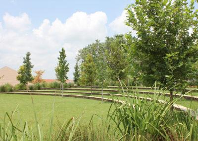 American International School - Hard & Soft Landscaping