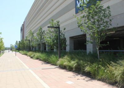 Mall of Africa - Landscaping